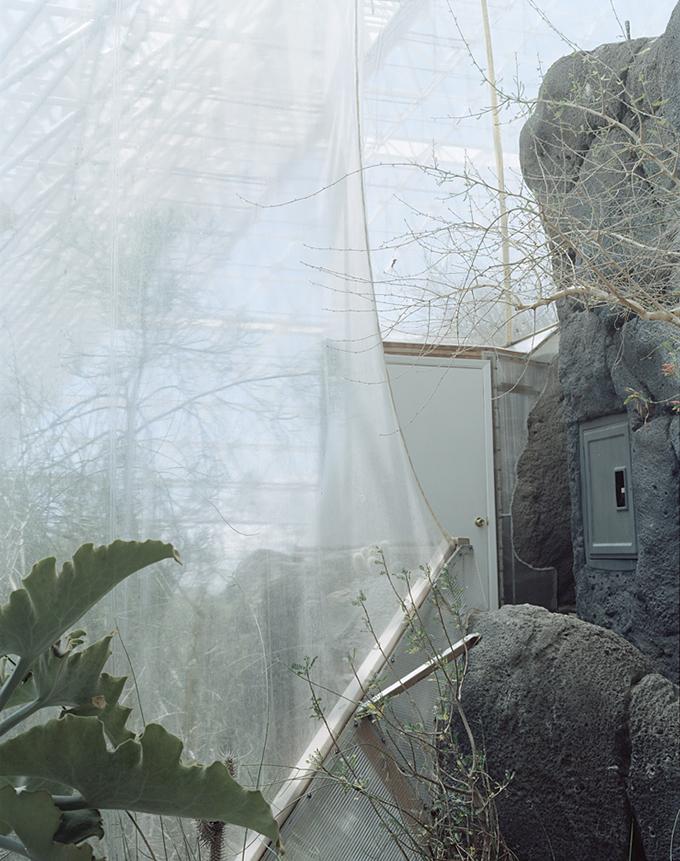 Judy Natal, Plastic Curtain